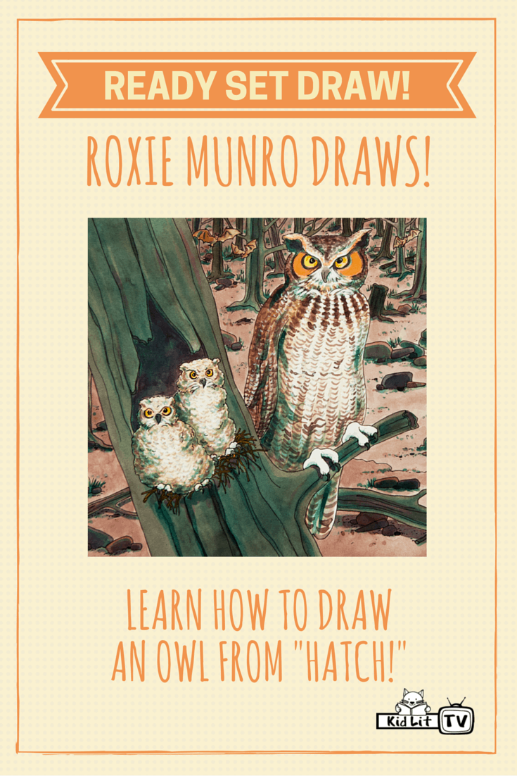 Ready Set Draw - Roxie Munro Owl from Hatch!